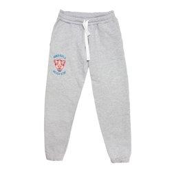 WAKE UP AND SQUAT - PANTS (grey)